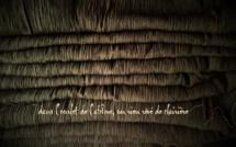 Expostion : dans l'ourlet de l'abîme, un rien rêvé de clairière